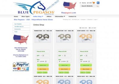 USA-Web-Design-2