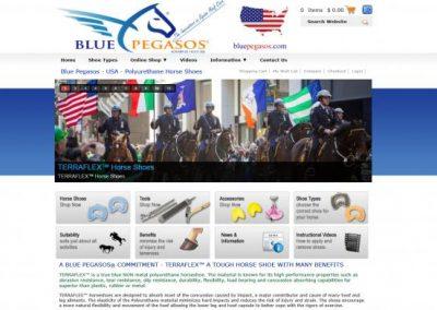 USA-Web-Design