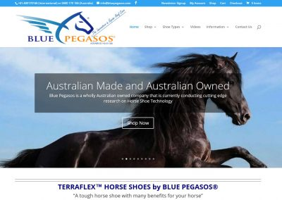 Blue Pegasos Horse Shoes